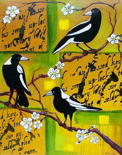 Magpies Warble