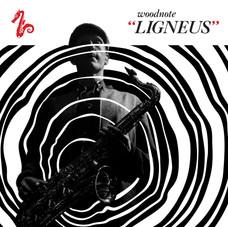 Ligneus-Album-Square-Large.jpg