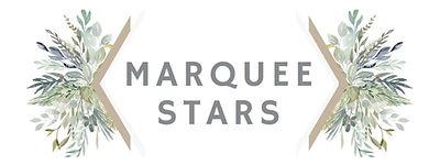 Marquee Stars_edited.jpg
