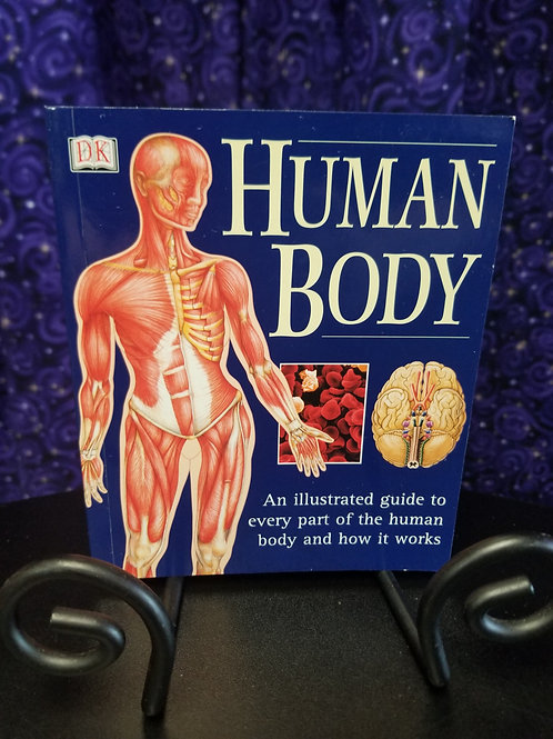 Human Body: Illustrated Guide