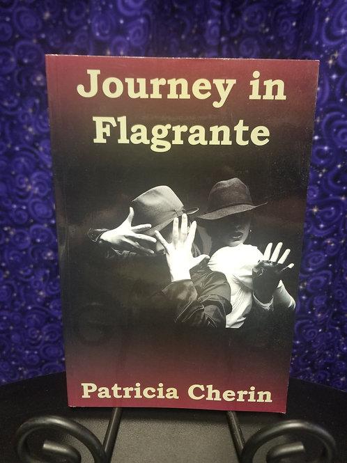 Journey In Flagrante: Poems by Patricia Cherin
