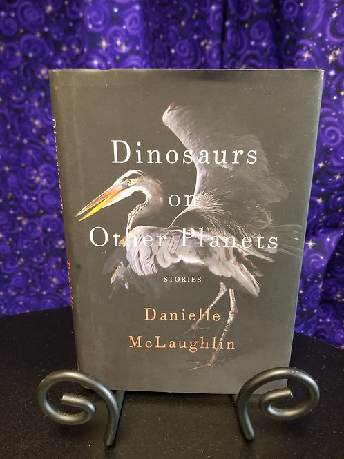 Dinosaurs on Other Planets by Danielle McLaughlin