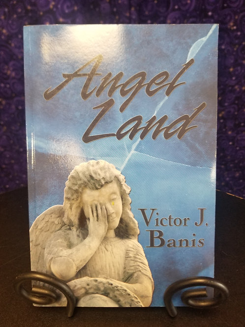 Angel Land by Victor J. Banis