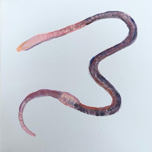 Earthworm 4