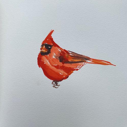 Cardinal #8