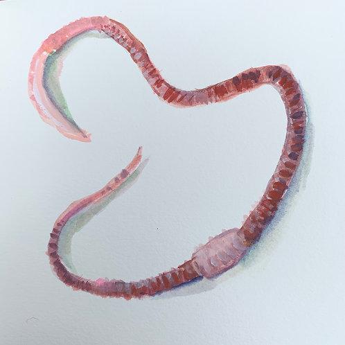 Earthworm 8
