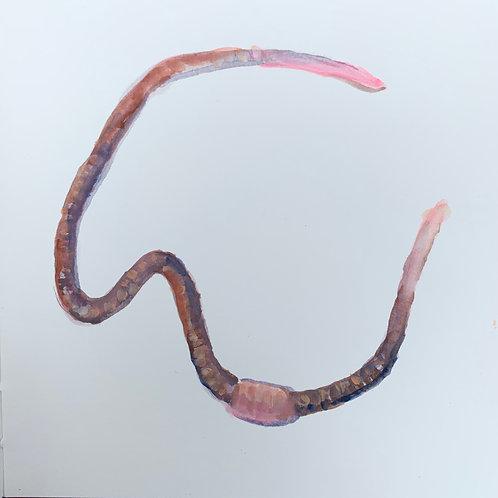 Earthworm 5