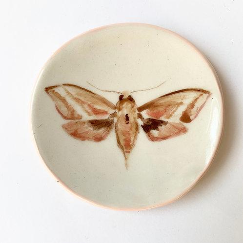 Moth Tiny Dish