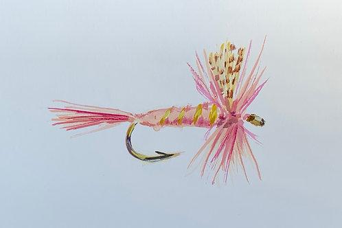 Pink Lady Dry
