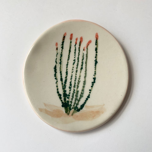 Ocotillo Tiny Dish