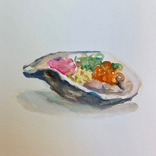 Rainbow Oyster