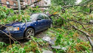 AUTO NATURAL DISASTER.jpg