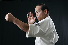 Soshi Hasegawa.jpg