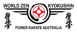 Power karate australia.jpg