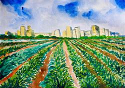 Urban farming | חקלאות עירונית