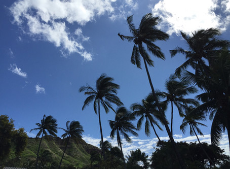 my sweet hometown Hawaii♡
