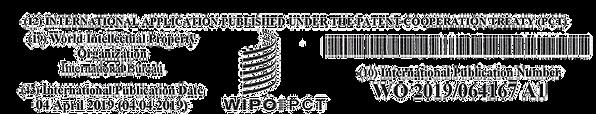 WIPO%2520Publicatie_Pagina_1_edited_edit