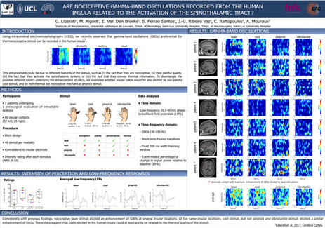Liberati et al. Are nociceptive gamma-band oscillations recordded from the human insula related to the activation of the spinothalamic tract? EFIC 2017, Copenhagen