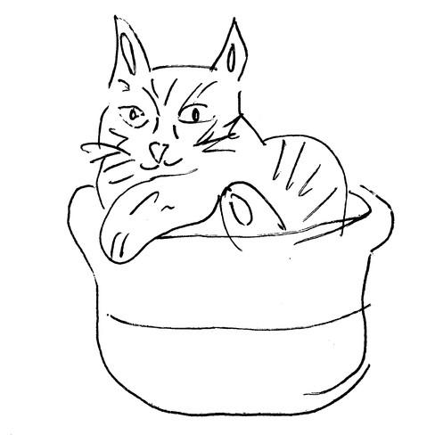 illustration-cat-2.jpg