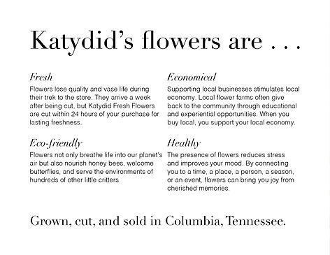 katydid-collateral-2-back.jpg