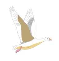 FG-Logo-v2_logo-3.png