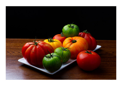 Tomatoes #1
