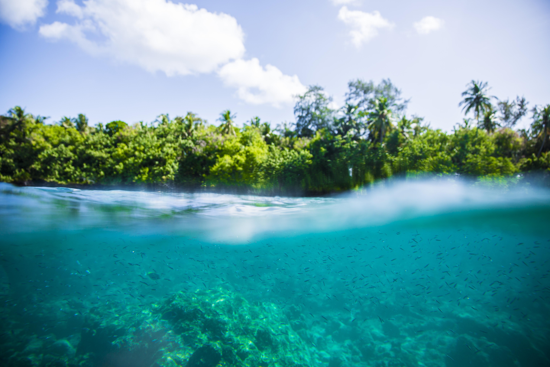 Lacabana Maldives  A DhMaamigili Island Snorkling (6)