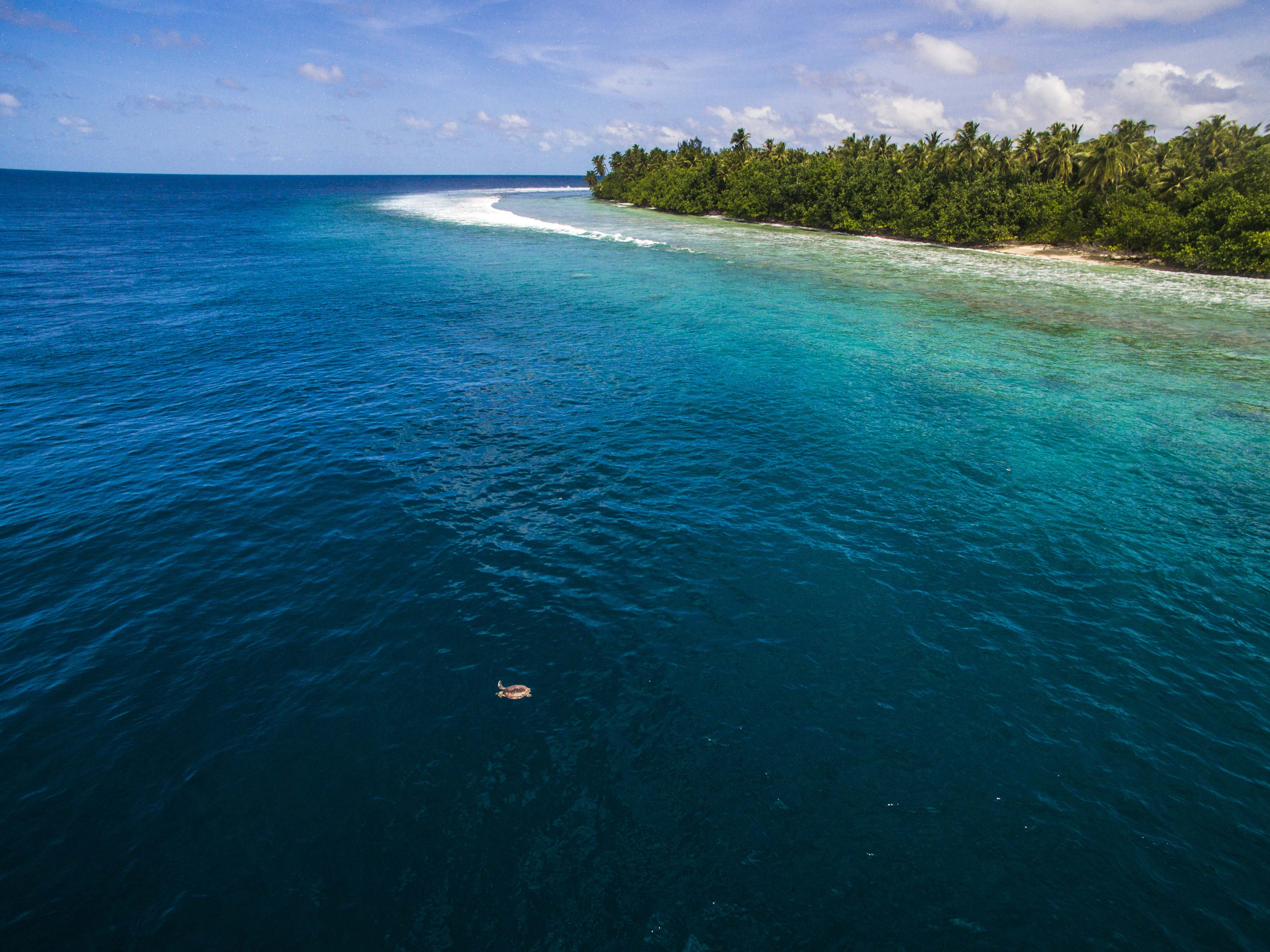 Lacabana Maldives  Ariyadhoo Picnic island (2)