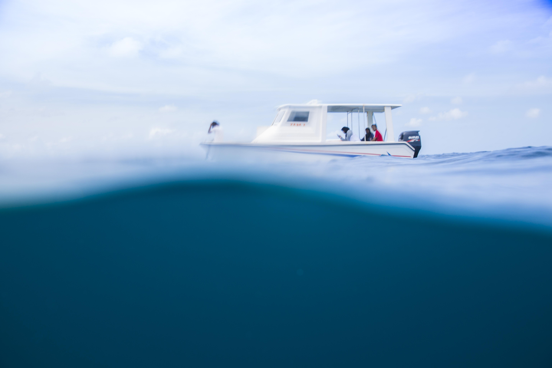 Lacabana Maldives  A DhMaamigili Island Snorkling (3)
