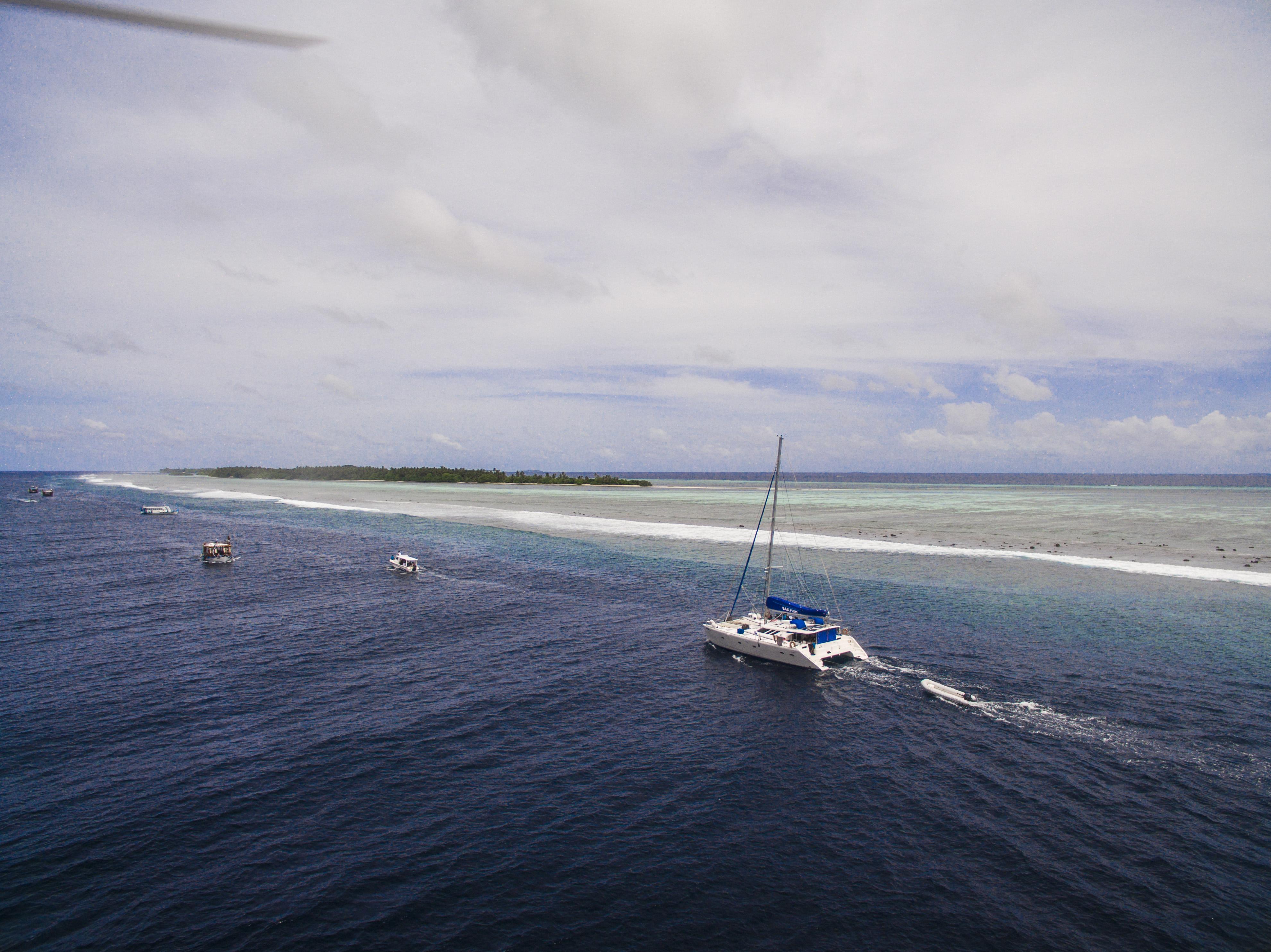 Lacabana Maldives  A DhMaamigili Island Whale Shark (11)