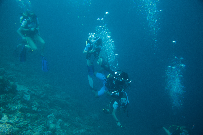 Lacabana Maldives  A DhMaamigili Island Diving (2)