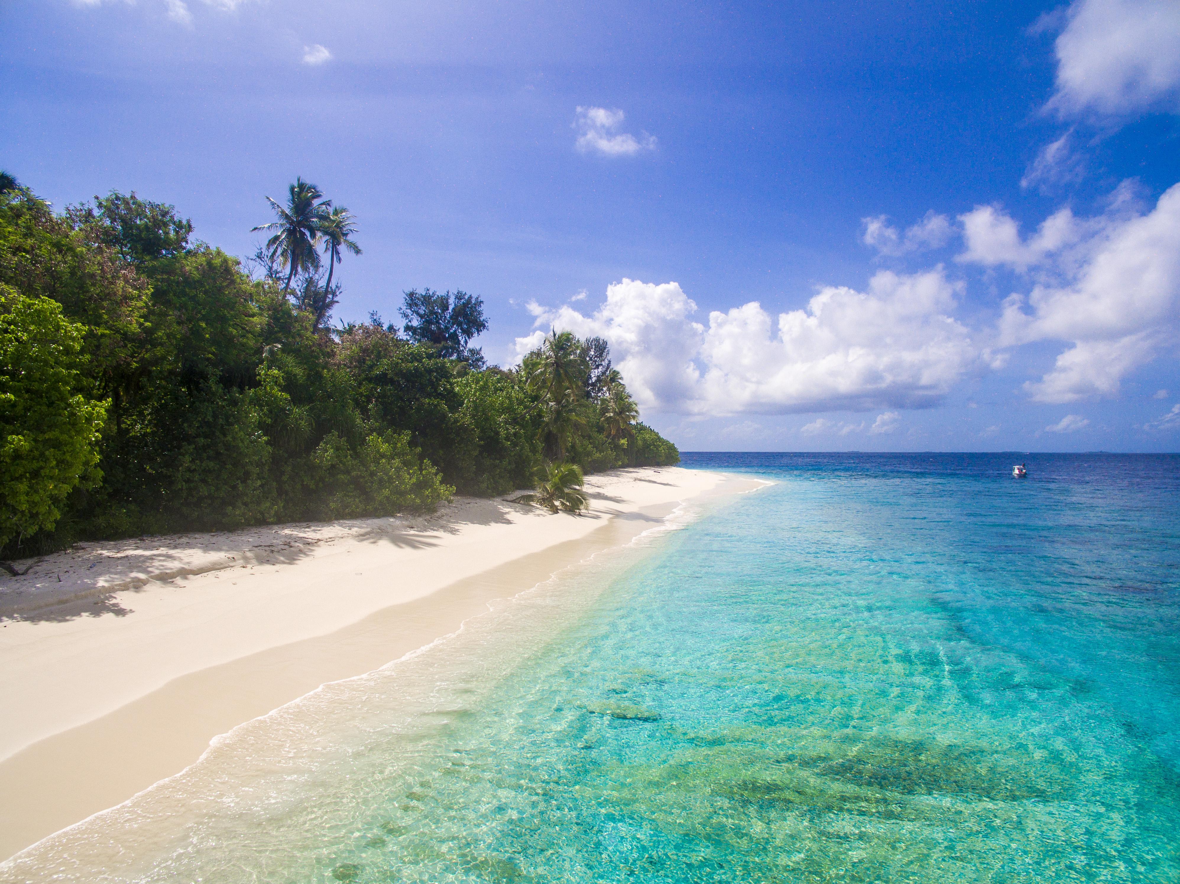 Lacabana Maldives  Ariyadhoo Picnic island (4)
