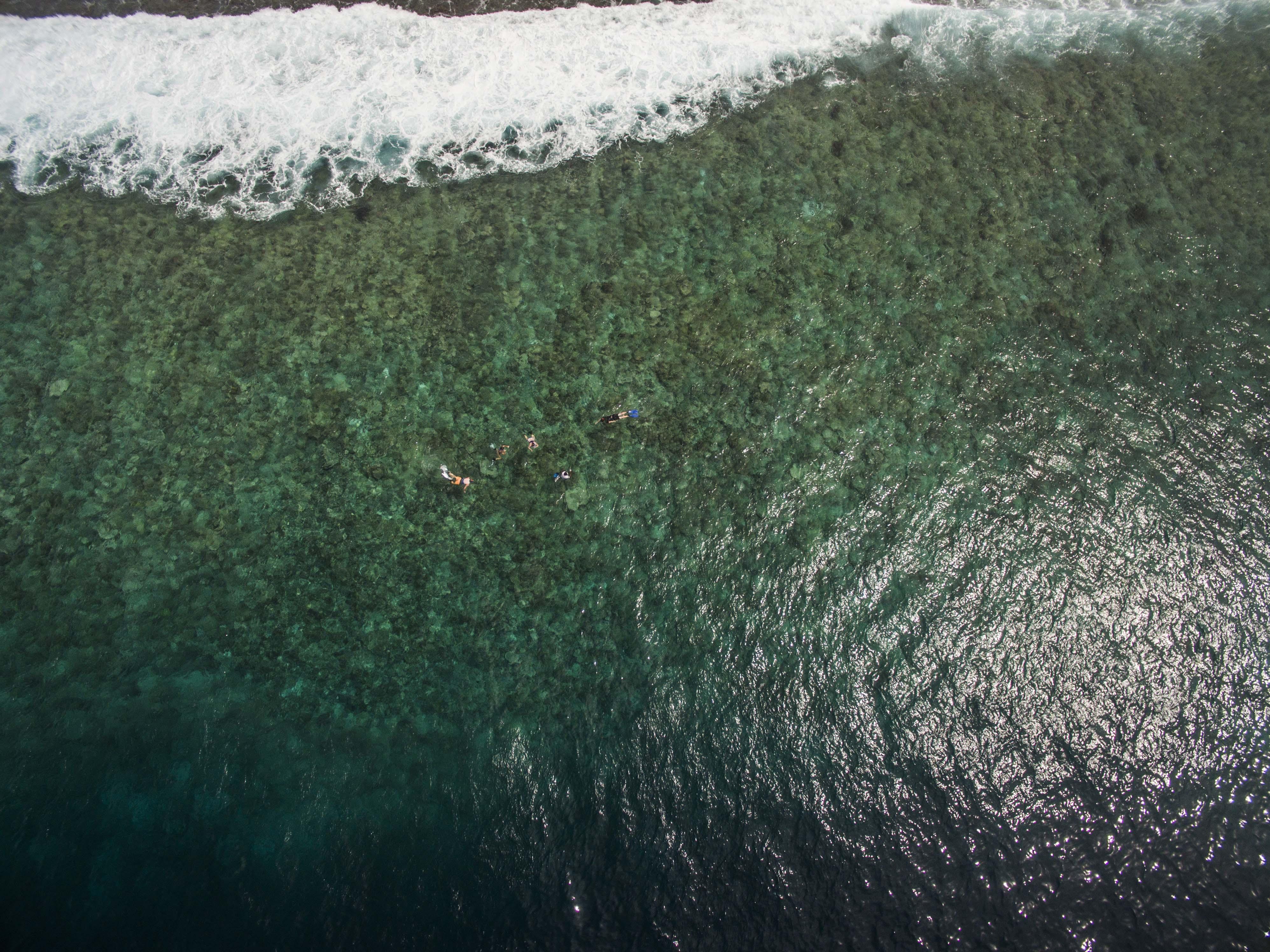 Lacabana Maldives  A DhMaamigili Island Snorkling (8)