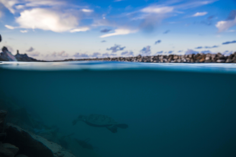 Lacabana Maldives  A Dh Maamigili Island (9)