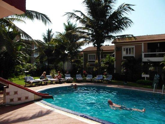 goveia-holiday-homes swim pool