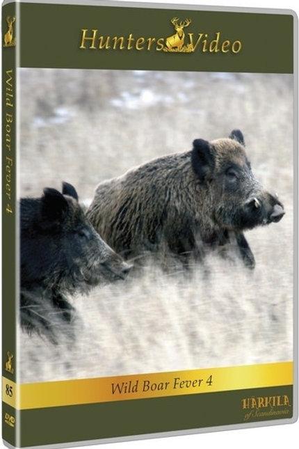 Wild boar fever 4