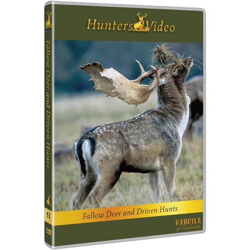 Fallow  deer and driven hunts