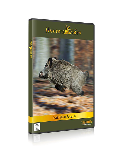 Wild boar fever 6