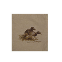 kussen eend - coussin canard