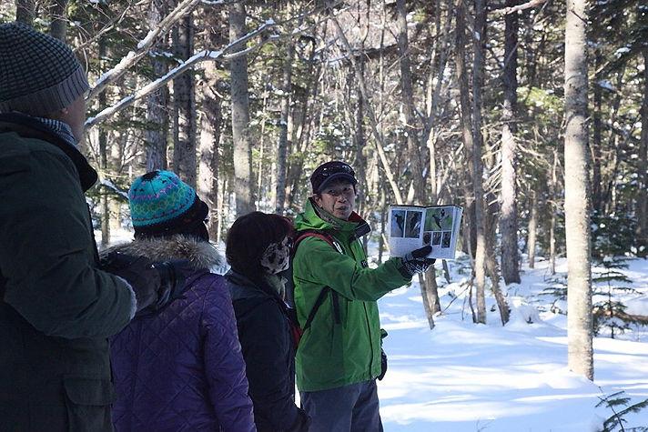 自然ガイドの店ARUKOUYA(歩こう屋) Guide  阿部孝典