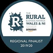 Regional-Finalist-W_NI-2018_19_green-RGB