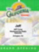 Disneys CA Adventure Grand Opening Event