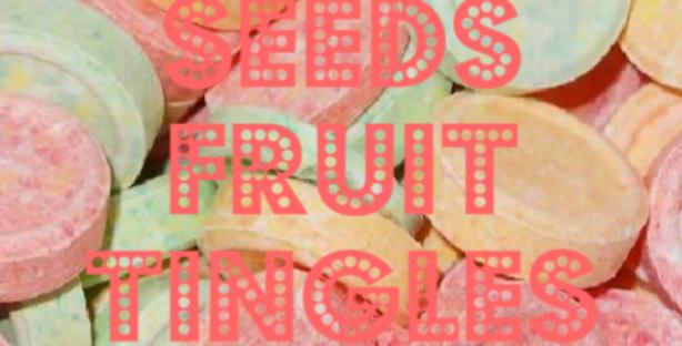 OG SEEDS FRUIT TINGLES
