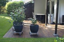Holzplatten AG Thermo-Esche-mit-Bankirai