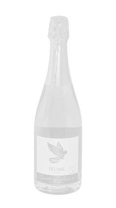 Sparkling Pinot Noir 2019