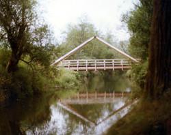 Lake Sammasish State Park Bridge