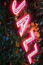 Jazz- Neon Light Bar Sign1.JPG
