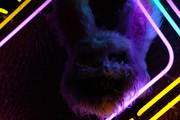 RETRO TV Neon Sign | Neon Light Artwork
