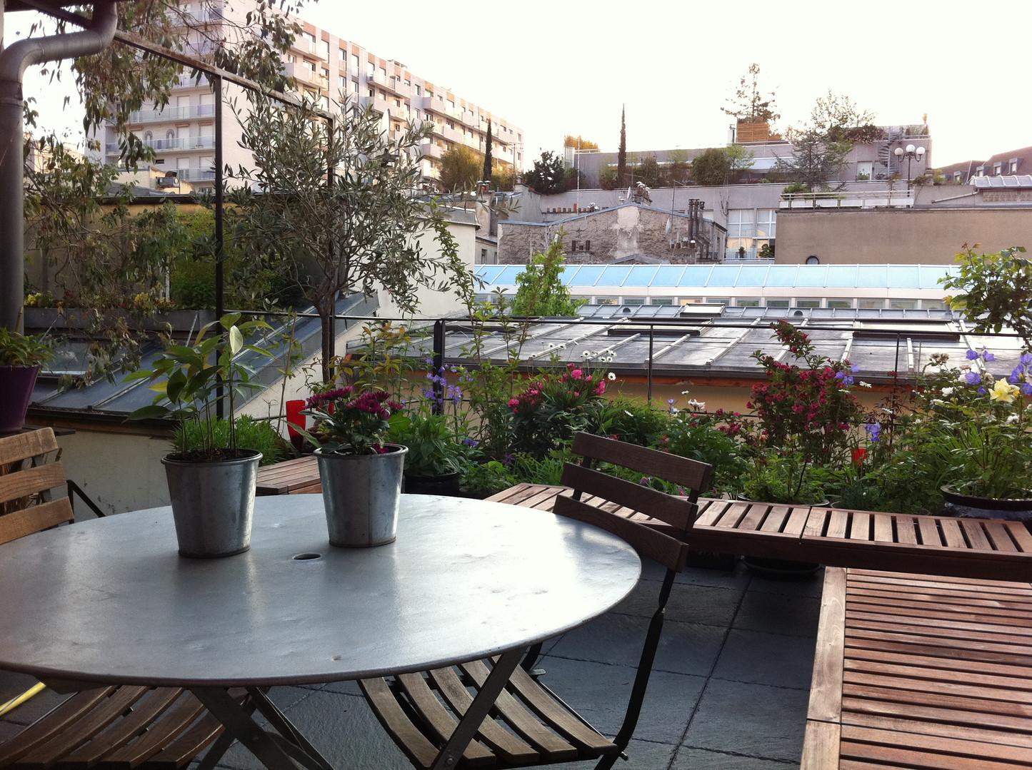 Vue sur les toits parisiens