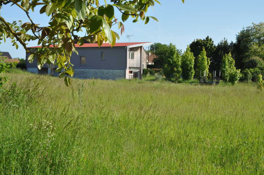 En pleine verdure, une maison individuel